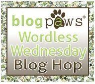 BlogPaws Hop.jpg