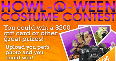 Entirely Pets Costume Contest