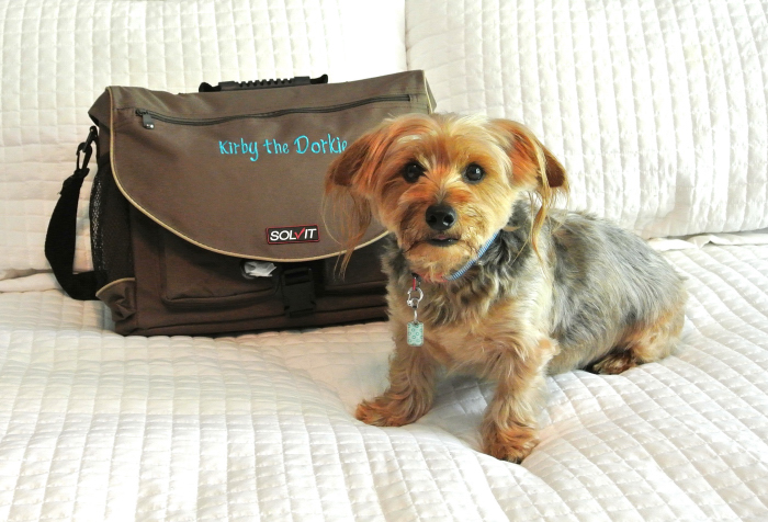 Solvit Travel Bag