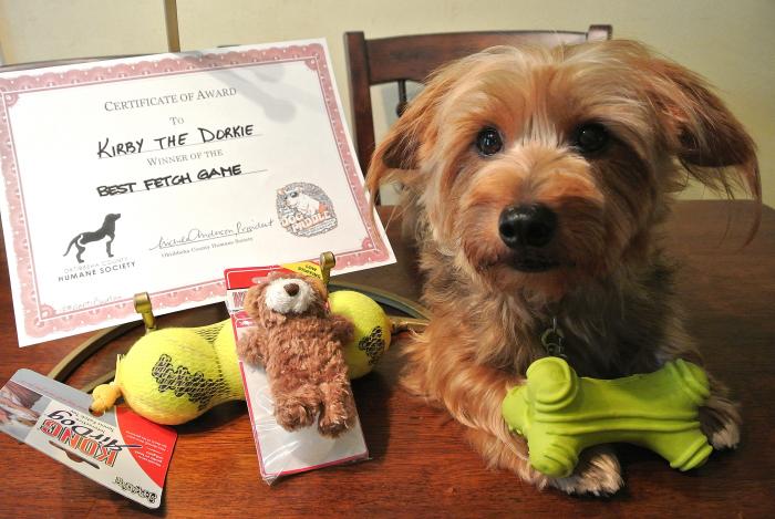 Best Fetch Winner