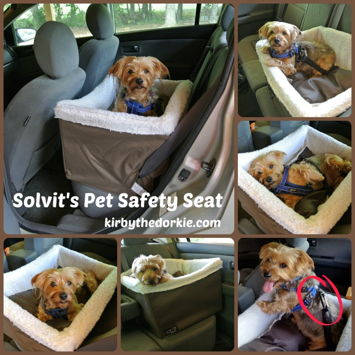 Solvit Pet Safety Seat.jpg