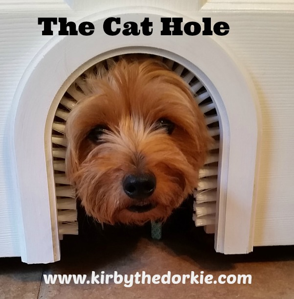 The Cat Hole