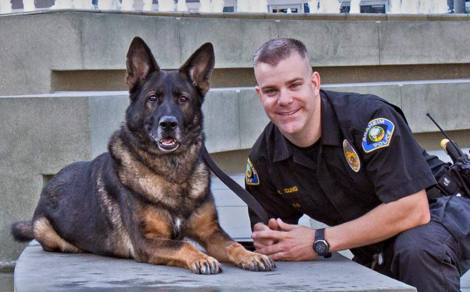 photo credit: friends of the anaheim police k9 association