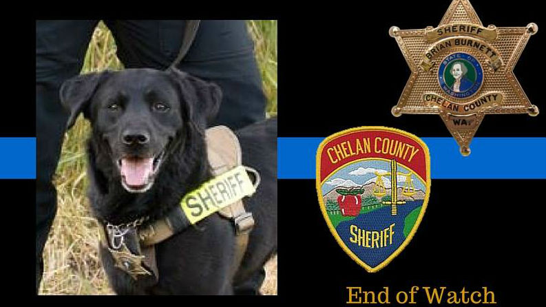 photo credit: Chelan County Sheriff's Office