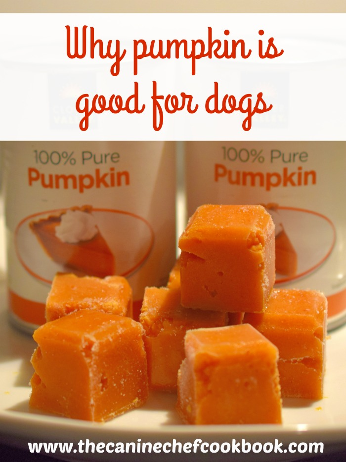 benefits of canned pumpkin for dogs
