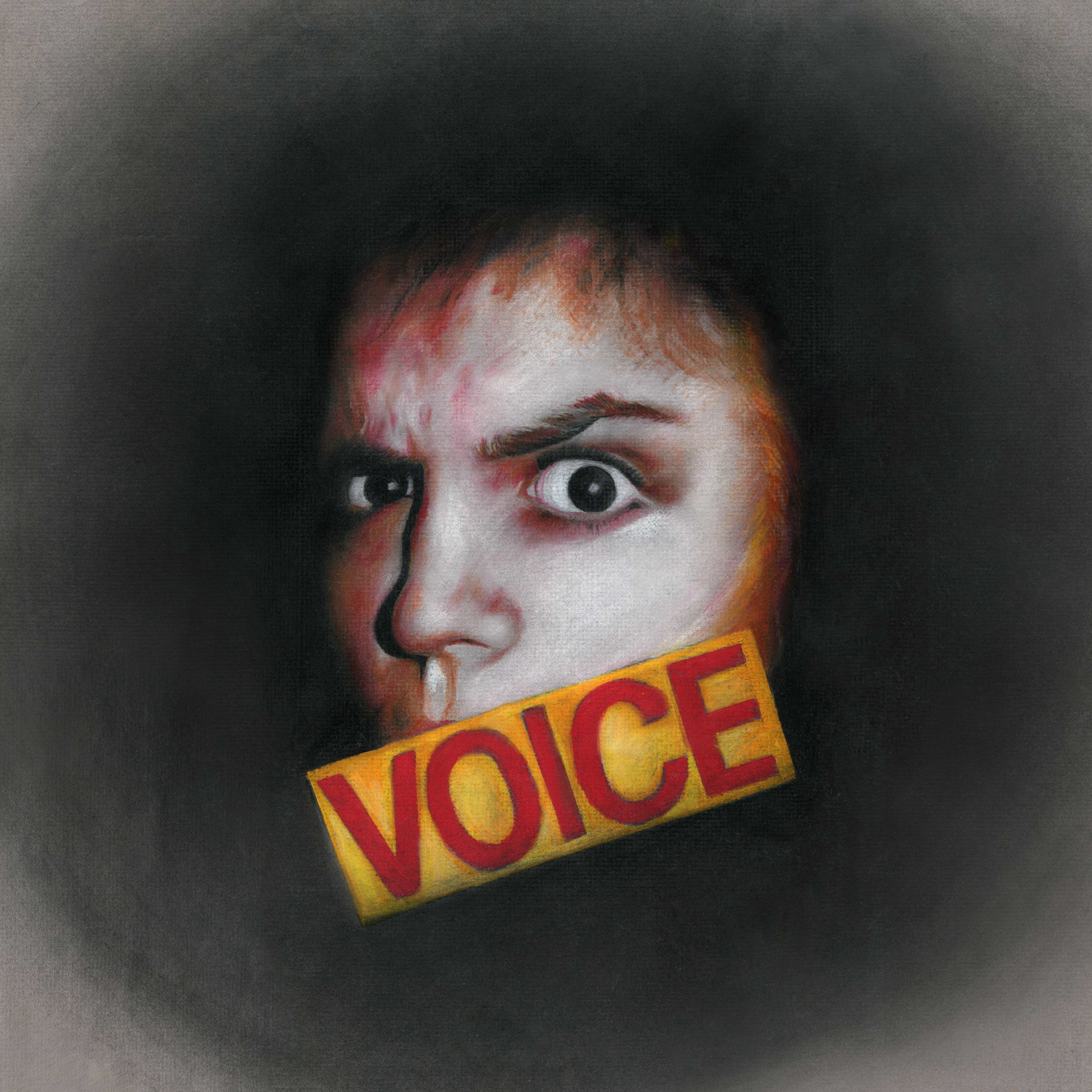 Voice Web File.jpg