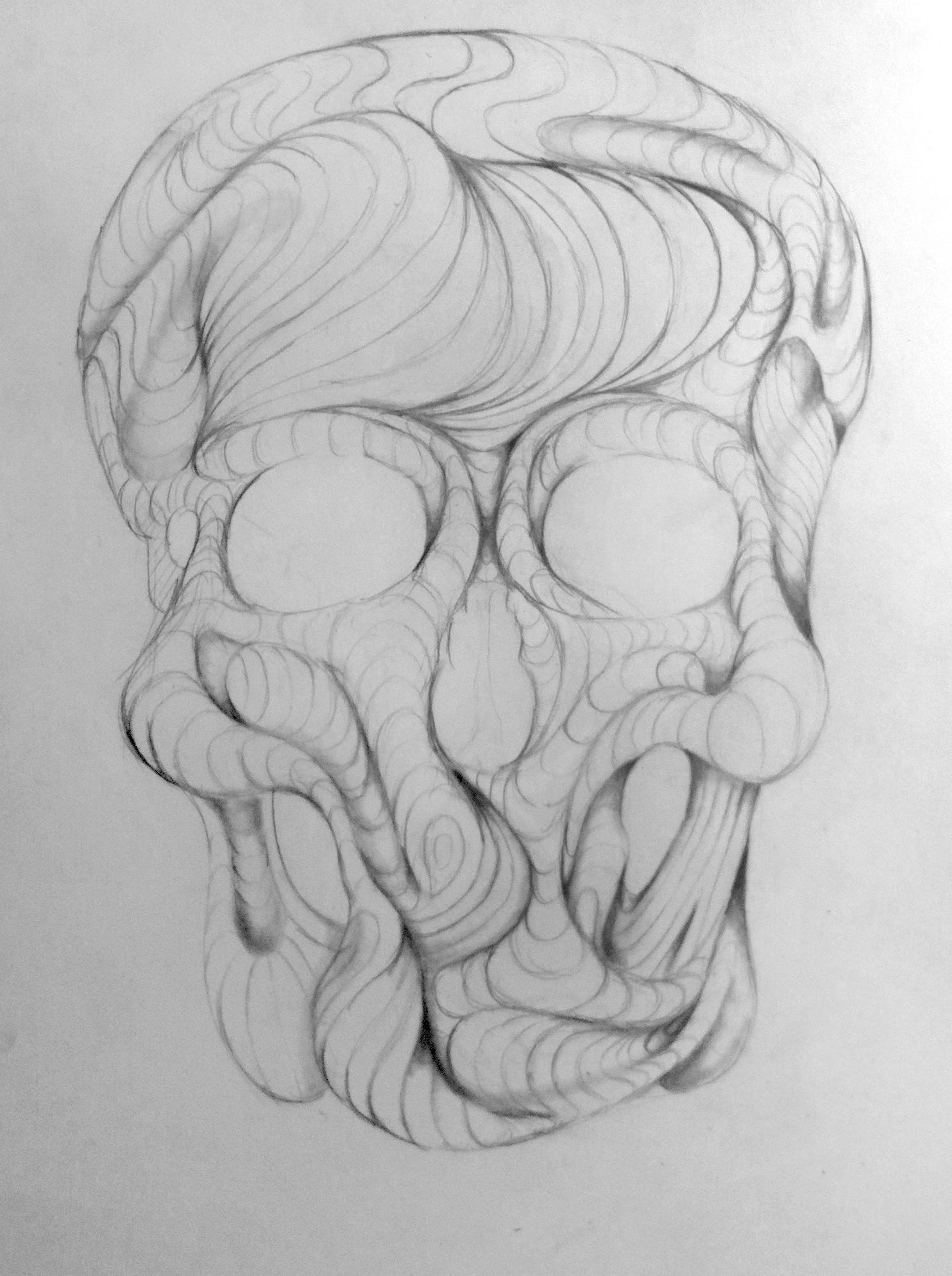 Skull WIP 3.JPG