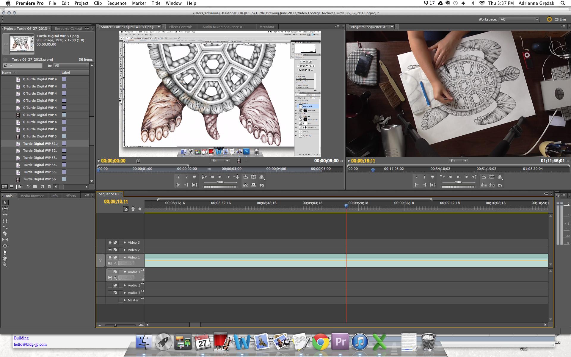 Turtle WIP video screenshot.png