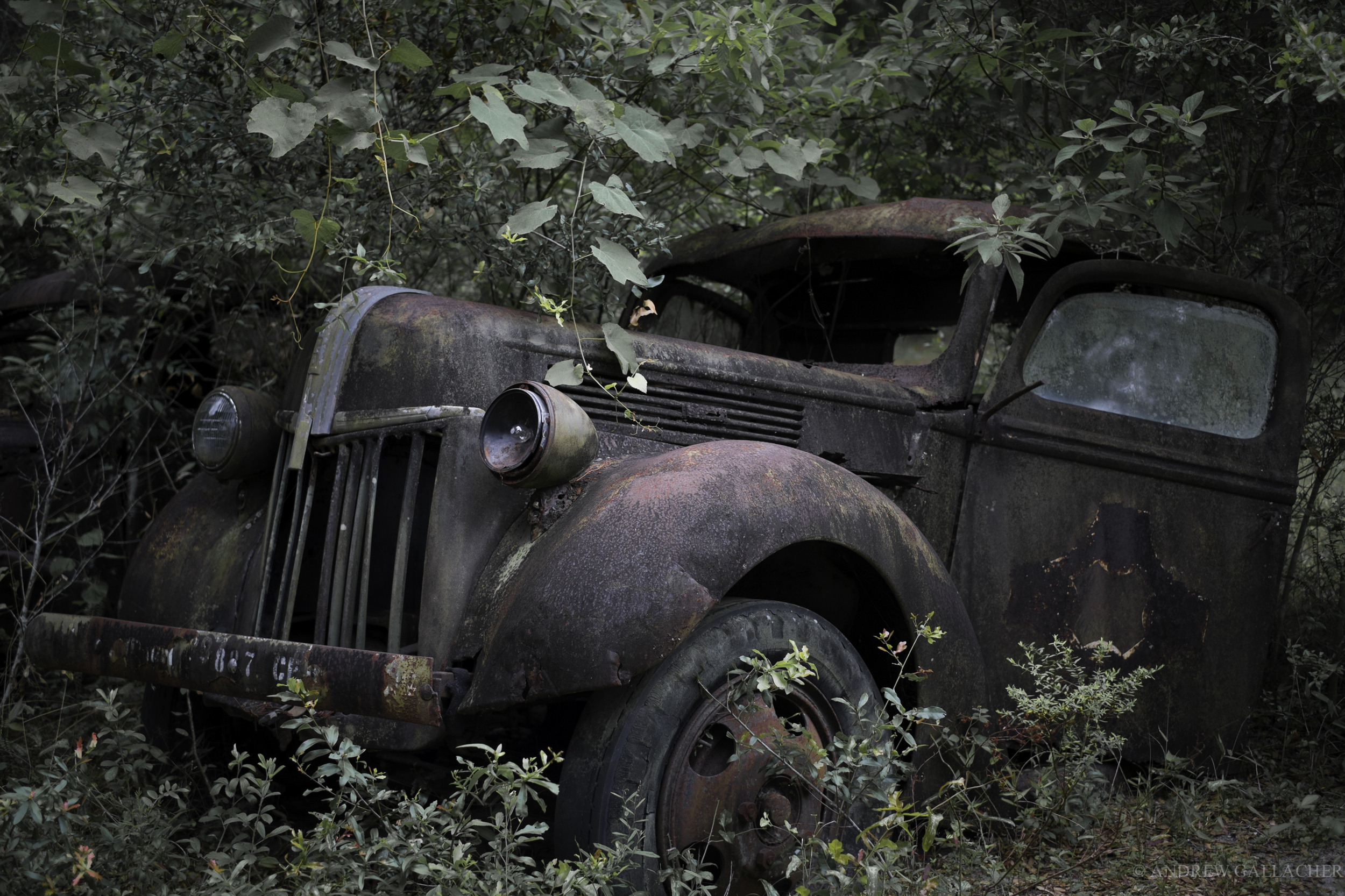 Army truck, Florida