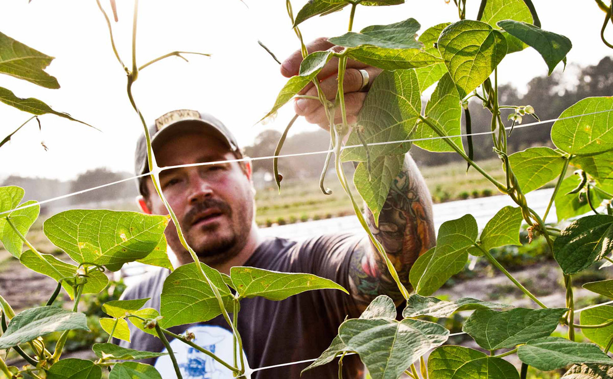 """Thanks to his debut cookbook, """"Heritage,""""  Sean Brock's  signature dishes can now be had in kitchens from Charleston to Chennai. An interview for  Modern Farmer ."""