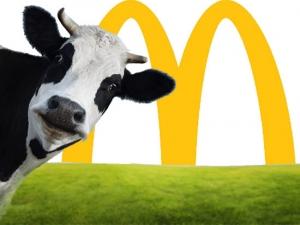 Foodable WebTV Network | Photo Credit: greenbiz.com