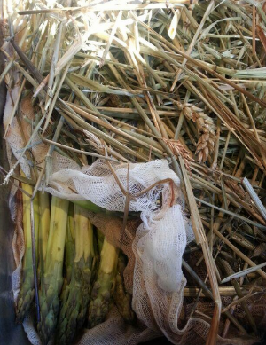 Pictured: Asparagus smoked in straw  | Photo Credit: Michael Voltaggio//Twitter
