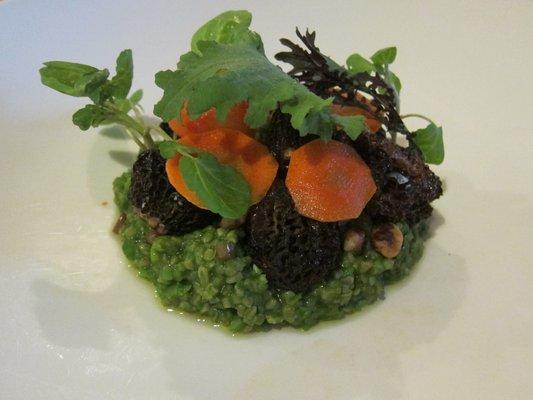 Morrel Mushrooms, Fava Bean and Nettle Porridge, Fermented Carrot, Black Walnut, Pickled Carrot at Commonweath  | YELP, Michael U.