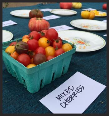 Farm Fresh Cherries    Foodable WebTV Network