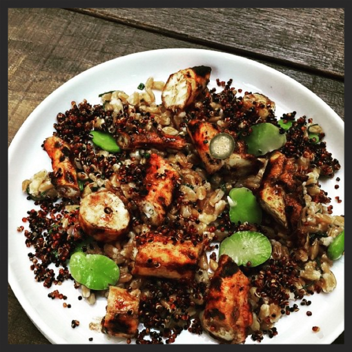 Chilled octopus with crunchy quinoa and farro at Balena  | Instagram @mcote685