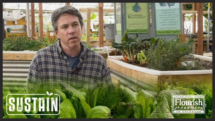 JD Sawyer, Colorado Aquaponics