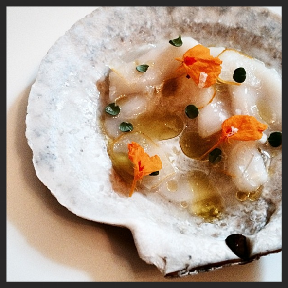 Live diver scallop with candied Buddha's hand, yuzu, and thyme  | Instagram @laurelpx