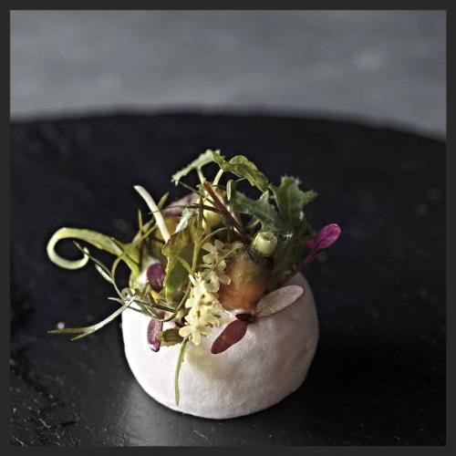 Salad by Dominique Crenn at Atelier Crenn |  Instagram @theworlds50best