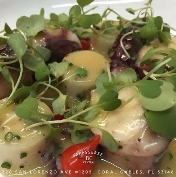 Octopus with hearts of palm    Instagram, @brasseriecentralmiami