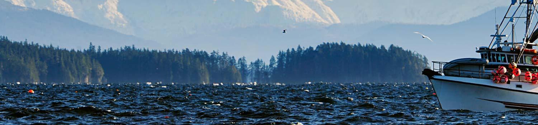 alaska-seafood-sustainability.jpg