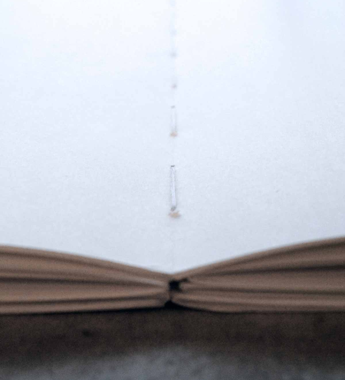danielle-will-design-handlettering-edward-johnston7.jpg