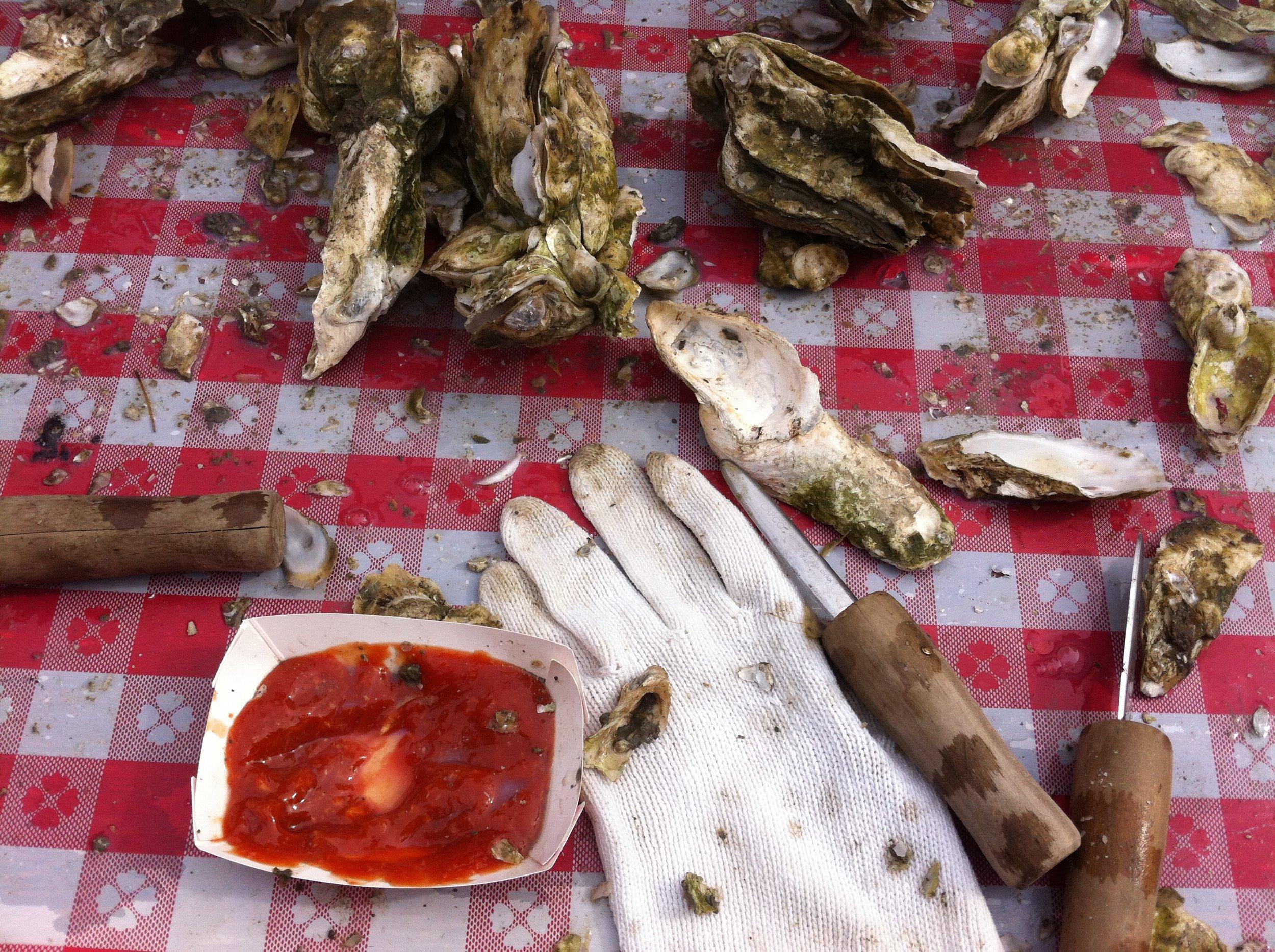 Backyard oyster roast