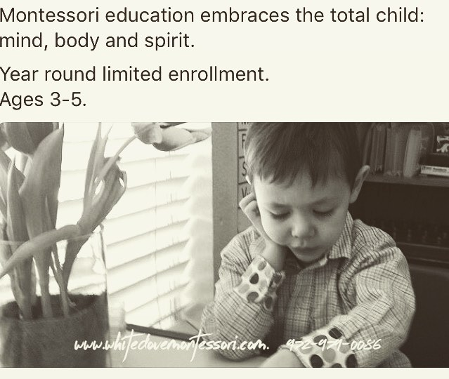 #nowenrolling age 3-6 🍎#montessori AMI #preschool #kindergarten #home #school #lovenature #respect #life #parents