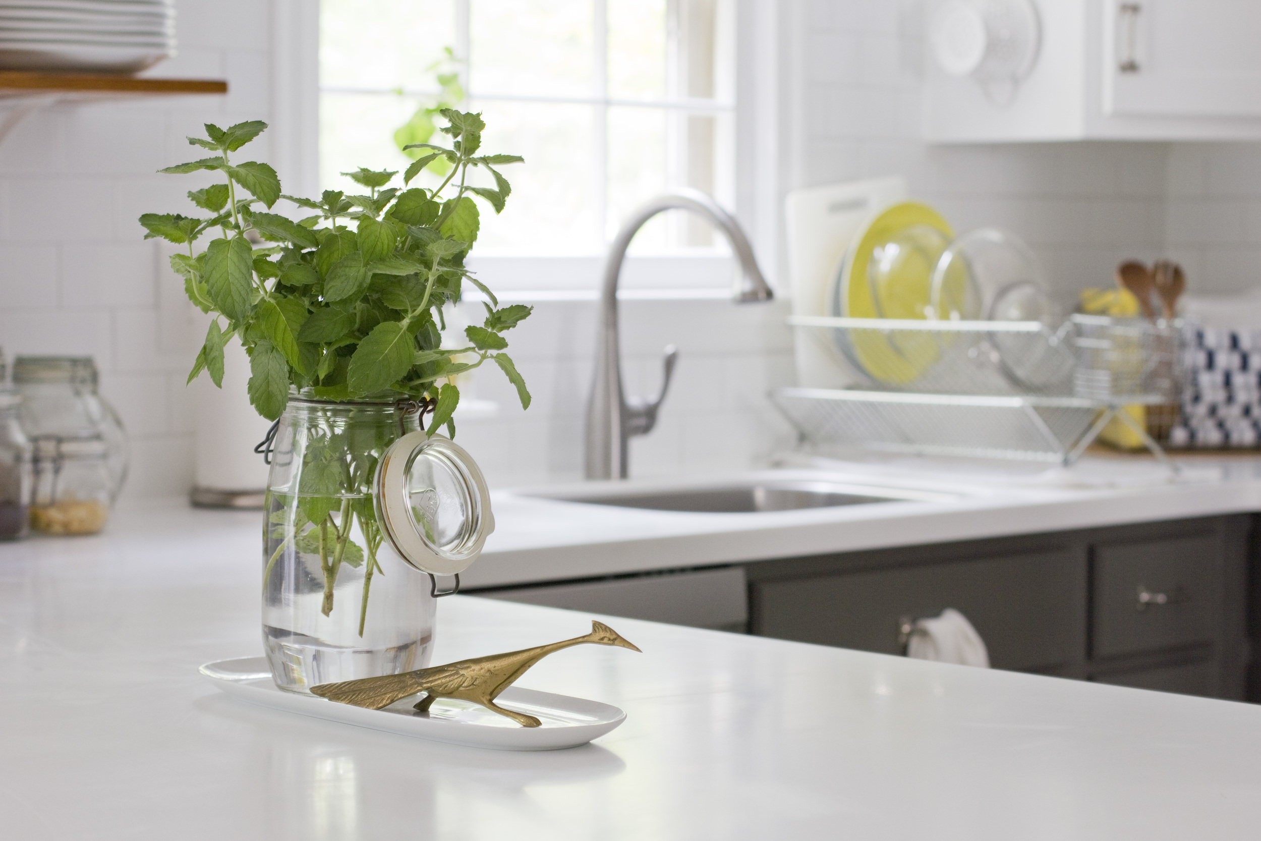 KitchenRemodel_Bird_CC1.jpg