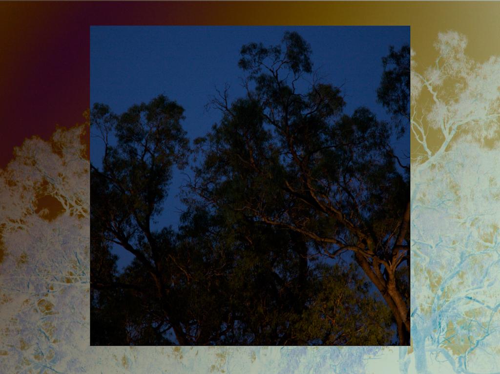 gracecramer_framed_2011_6.jpg