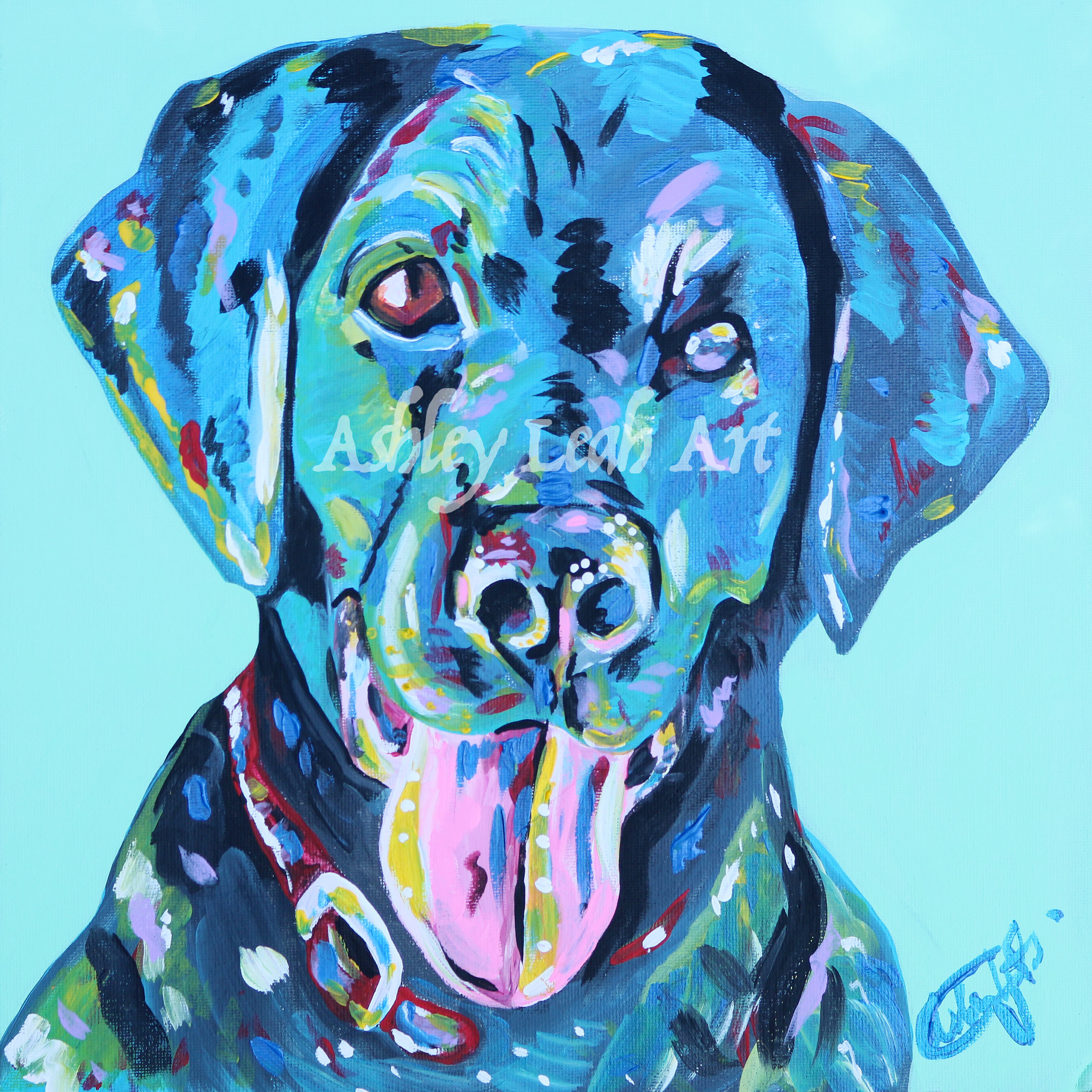 Roo the Lab -