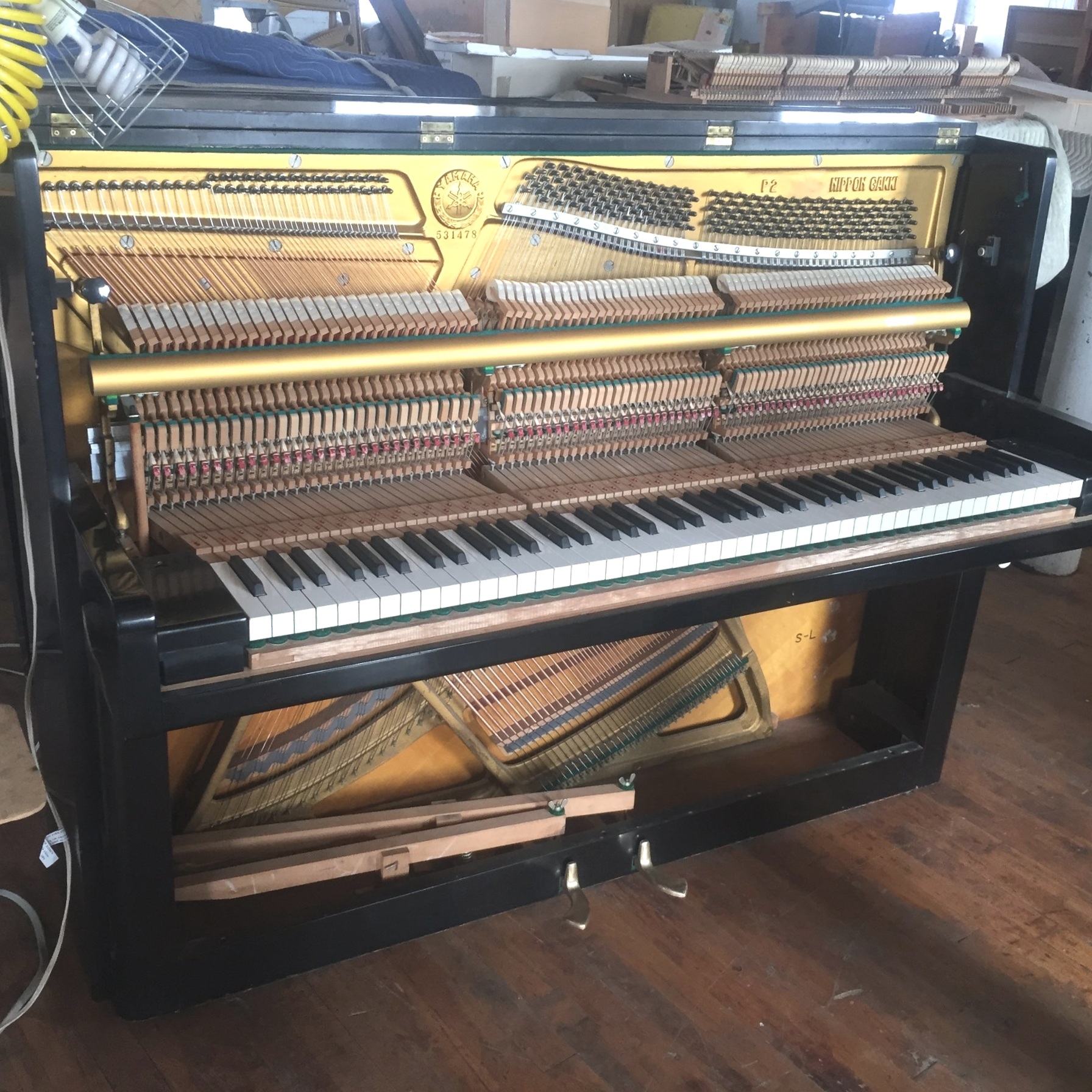 Moving/Tuning/Repair - We provide piano moving/tuning/repairing services. Contact us for details about the services.