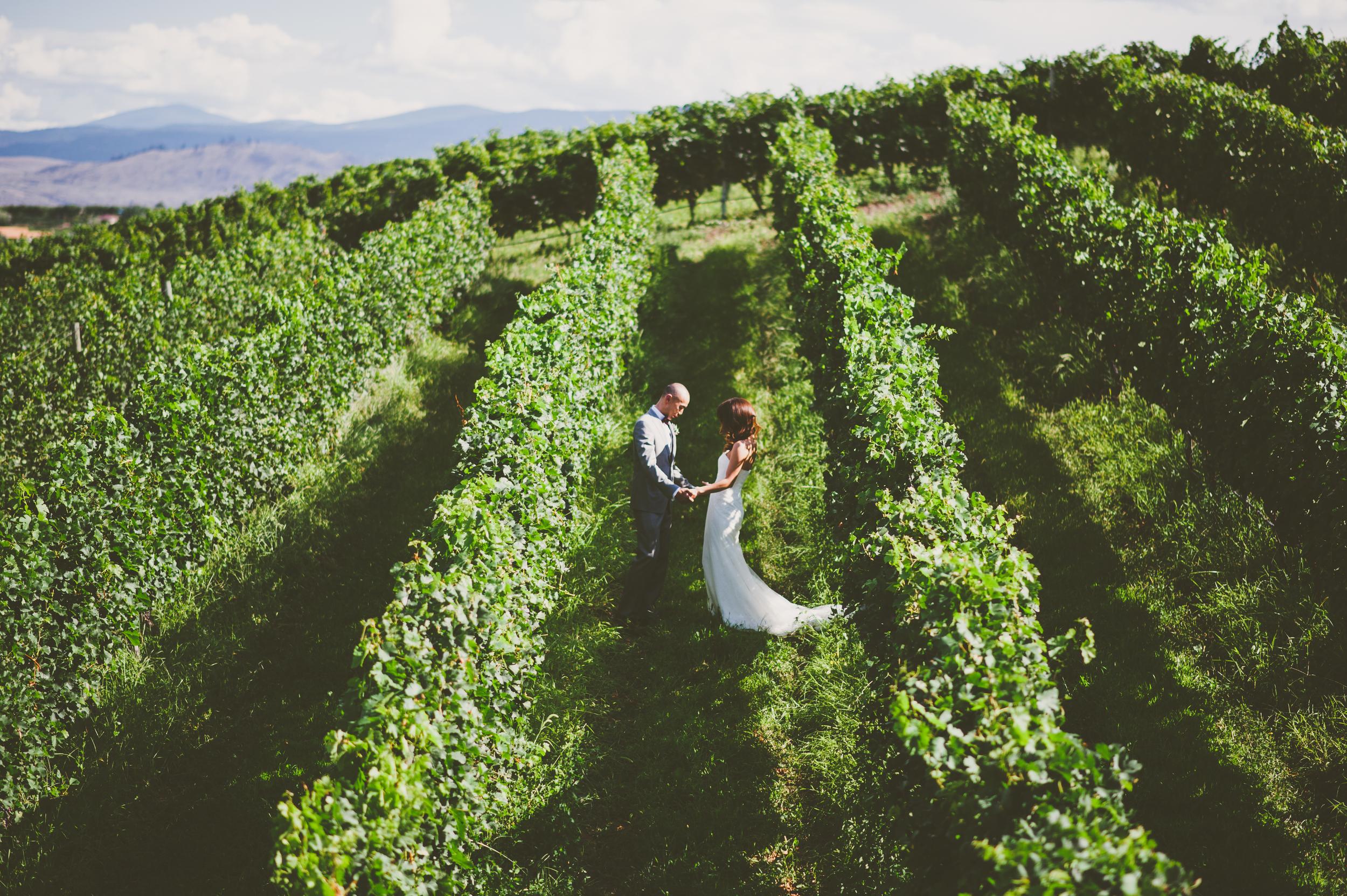 Osoyoos winery weddings