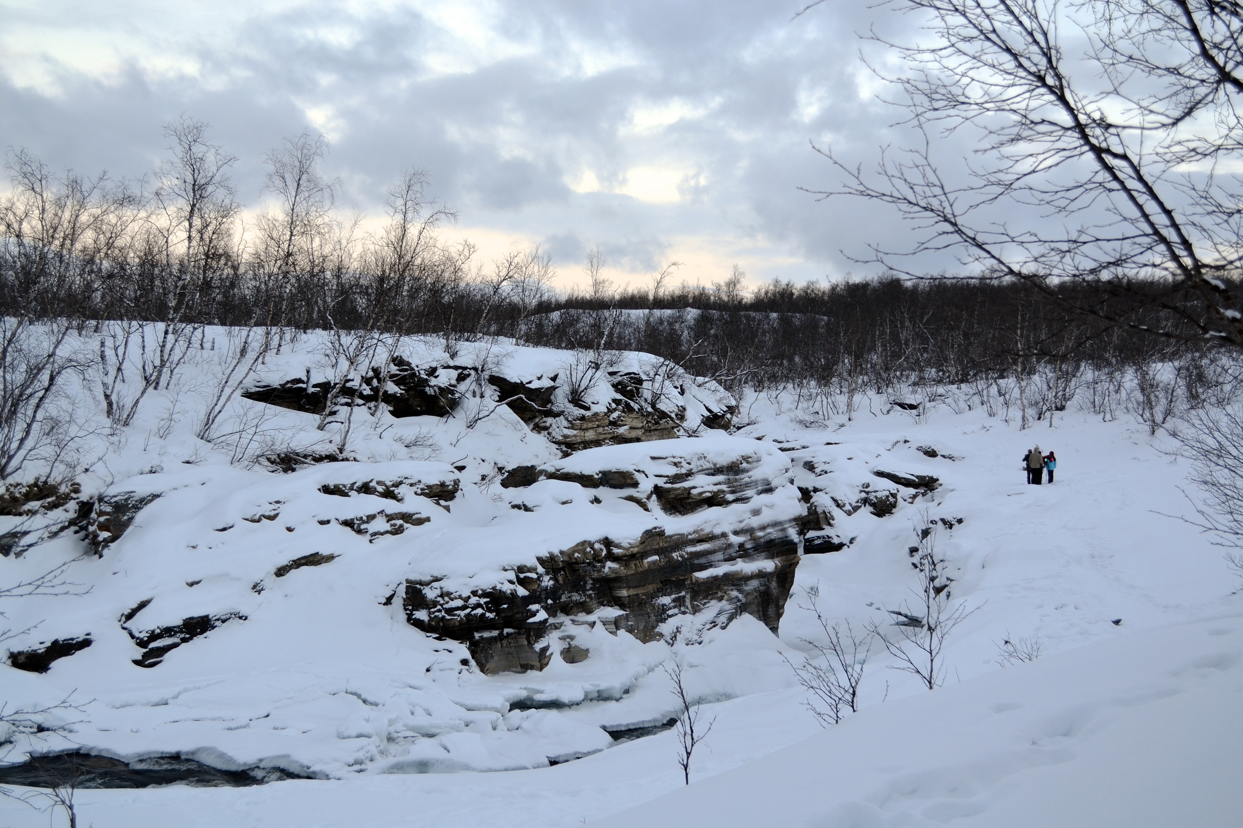 Along the Kungsleden -- the Abisko River is visible along the rocks.