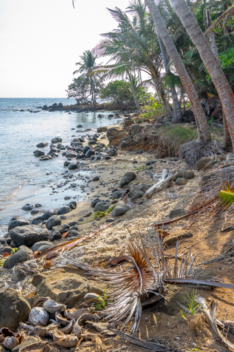 NIC LCI island getaway 201604 -00272.jpg