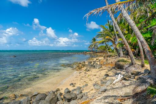 NIC LCI island getaway 201604 -09955.jpg