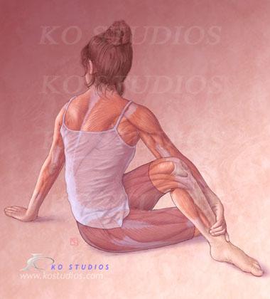 Fibromyalgia/Back muscles