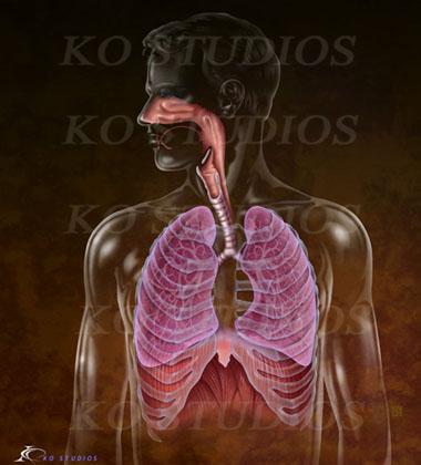 Respiratory Figure