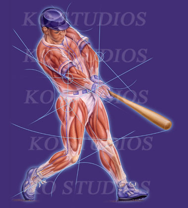 Baseball figure with muscles in action
