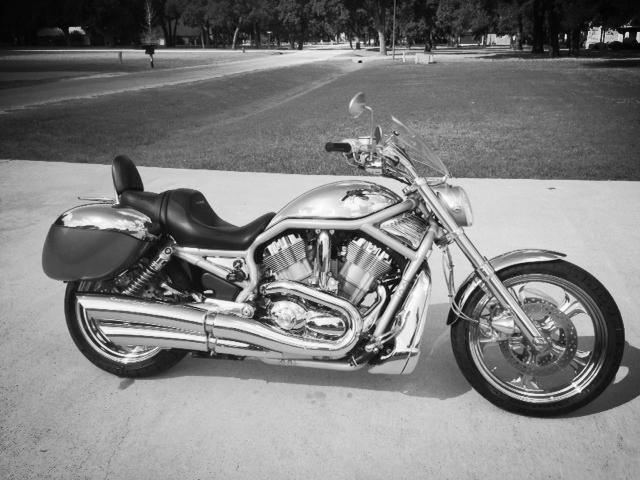 2002 Harley Davidson V/Rod