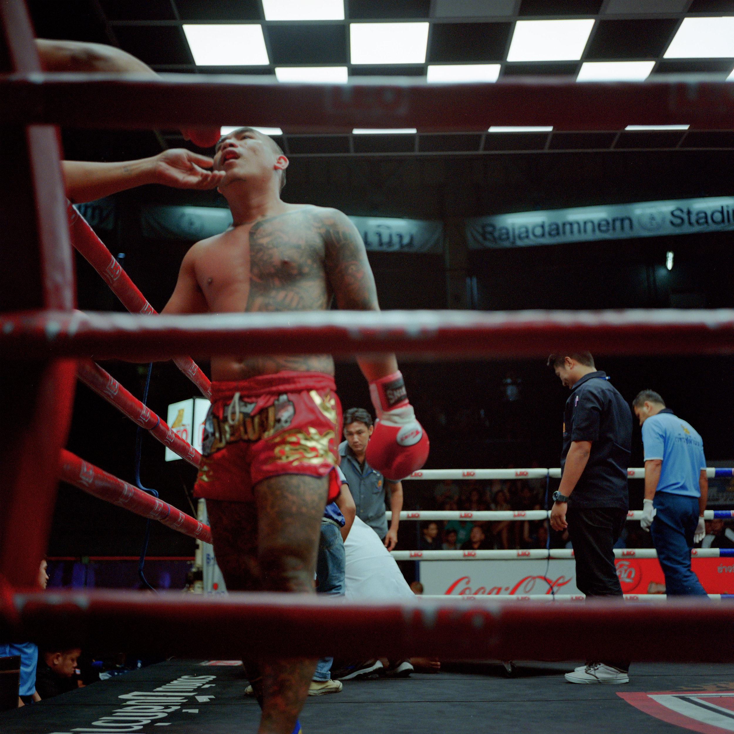 Fight.3.jpg