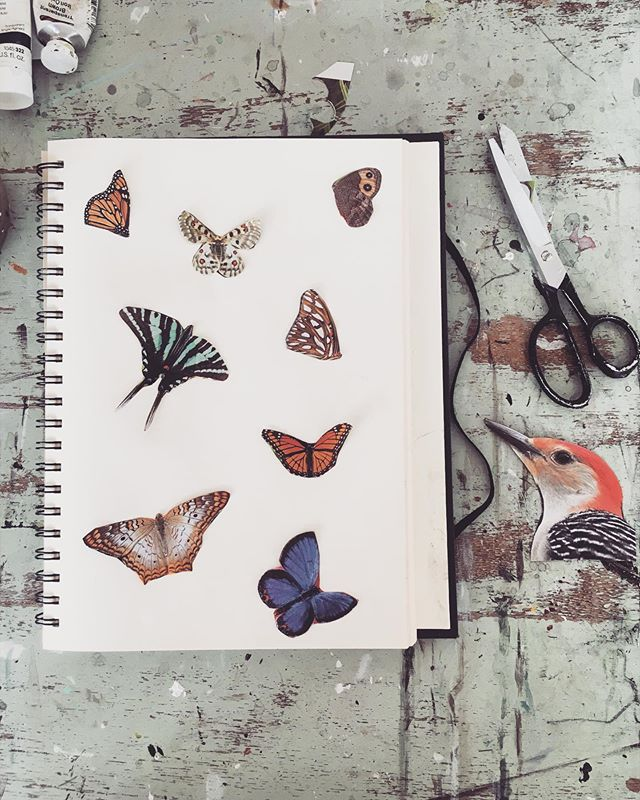 Collecting and piecing together ideas for new paintings. . . . . . . #artbyerinelizabeth #journal #sketchbook #process #inspiration #painter #wip #natureinspired #collage #butterfly #winterwings #nature #artist #draw #magic