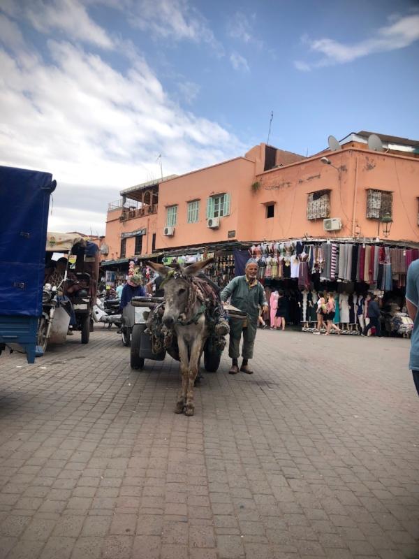 Sam Kirk Marrakech2.jpg