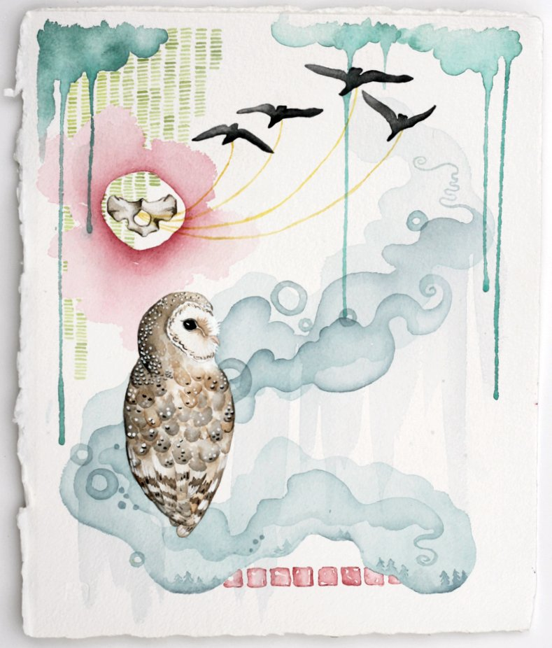 "Working with a Realistic Barn Owl and vertebrae, Recognizable birds, and Abstract ""weeping"" clouds and smoke swirls."