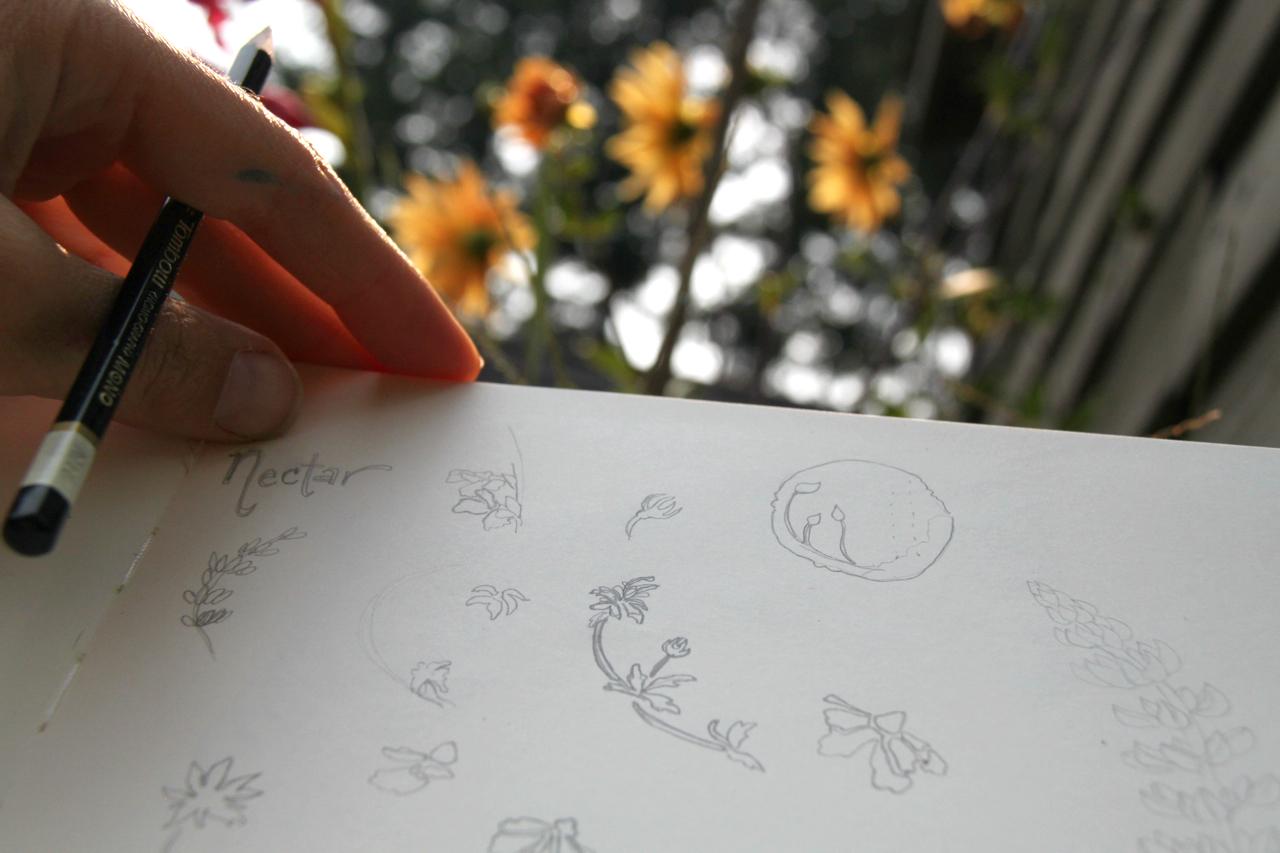 SketchStep1.jpg