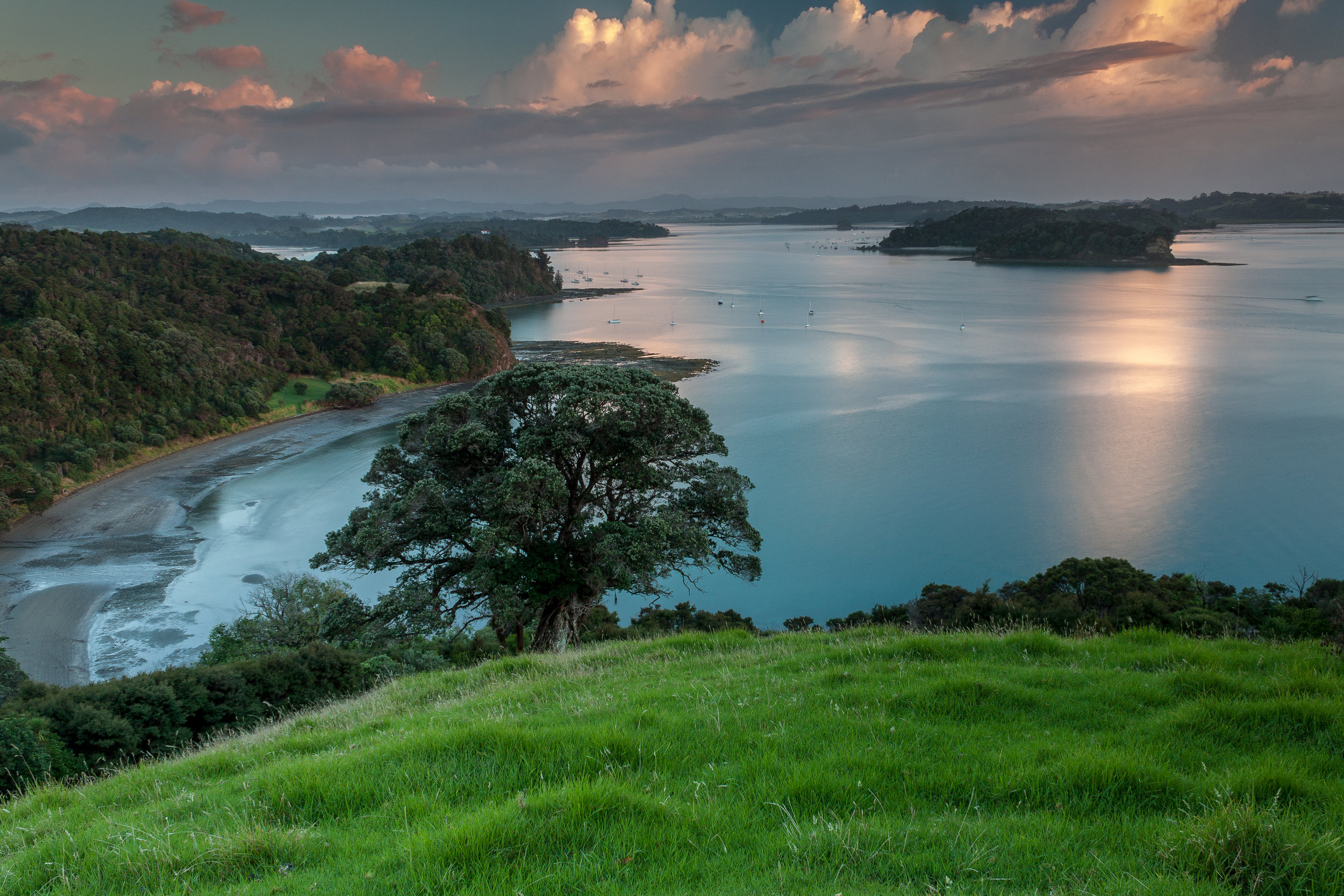 Sunrise at Mahurangi West -