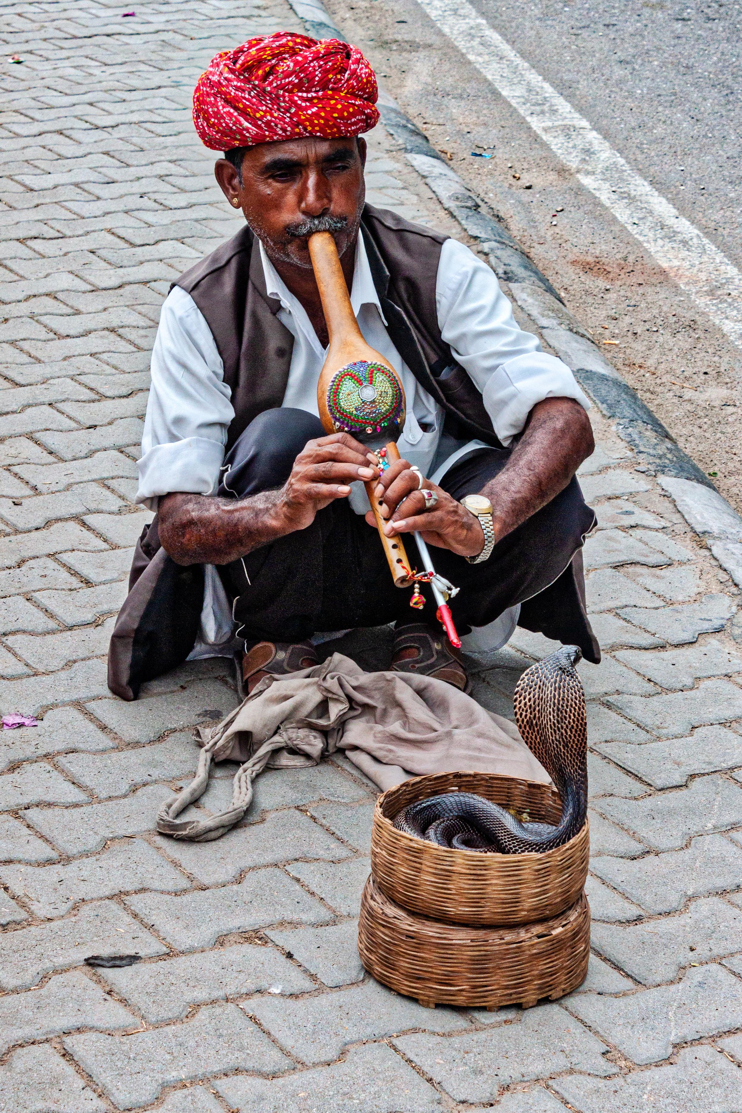 India - July 2018 - Jaipur-2.jpg