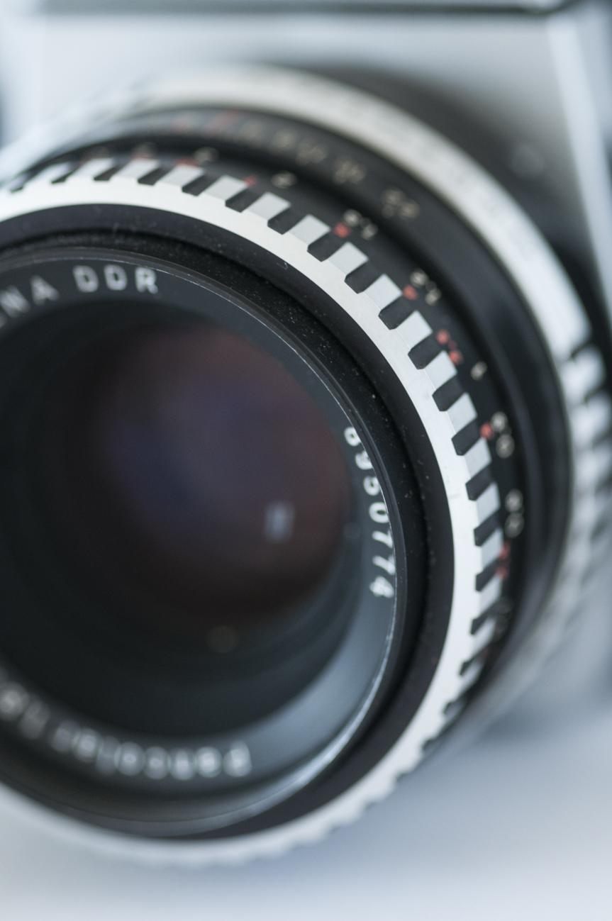 Kamera&Rosen-22.jpg