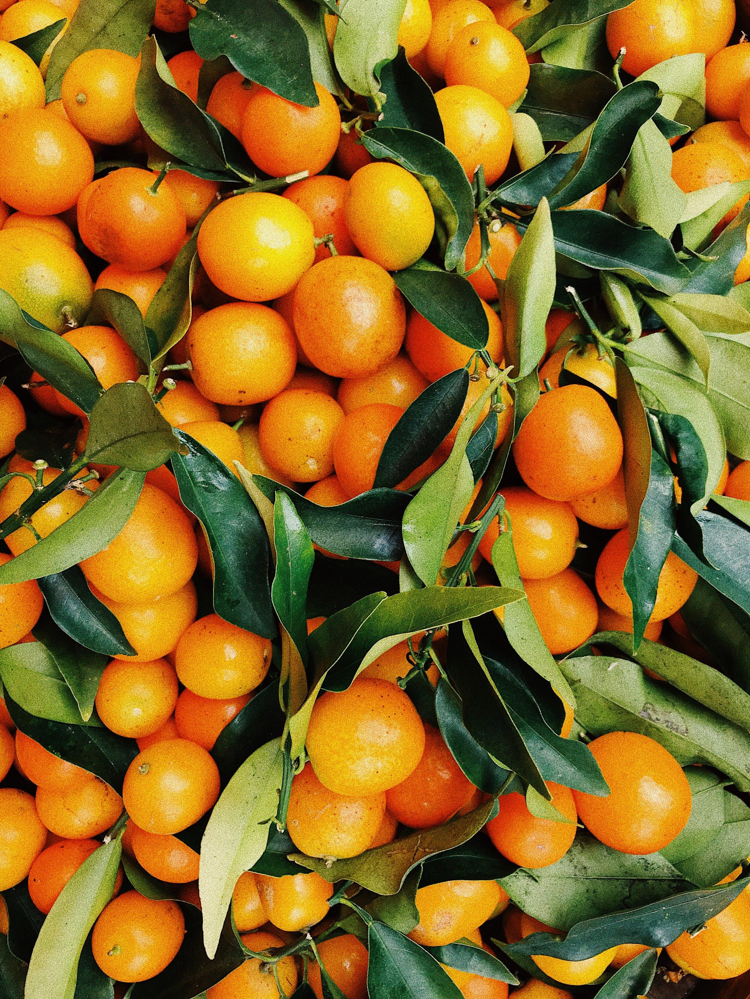 citrus-citrus-fruit-delicious-2294477.jpg