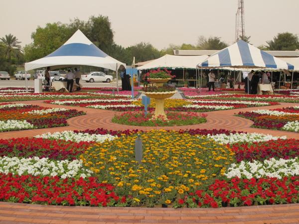 Flower Show.jpg