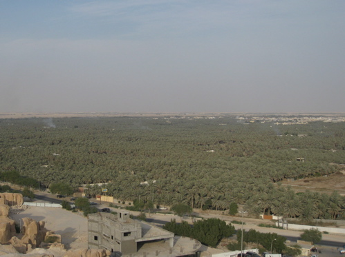 view from the top.jpg